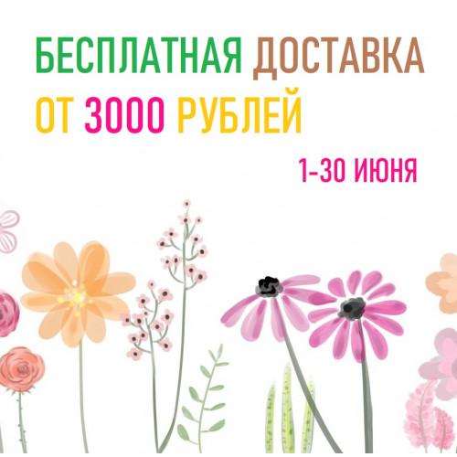 БЕСПЛАТНАЯ ДОСТАВКА ОТ 3000 РУБЛЕЙ!